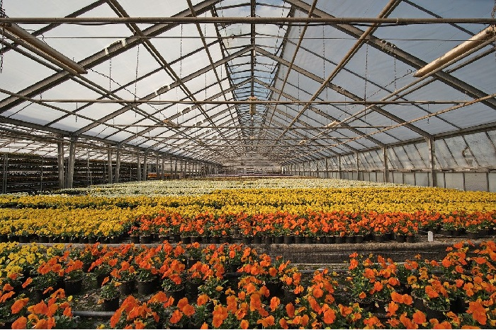 An Insight About Wholesale Agricultural Grower Supplies