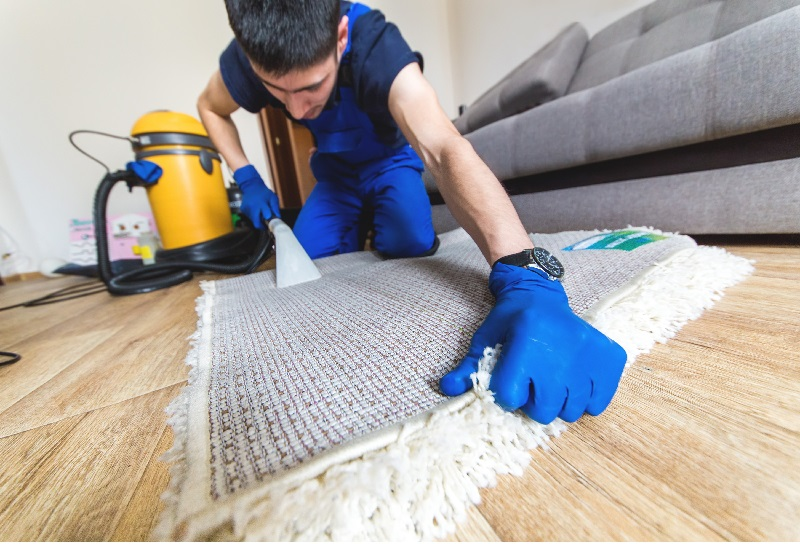 Tips for Preparing the Home for Professional Carpet Cleaning