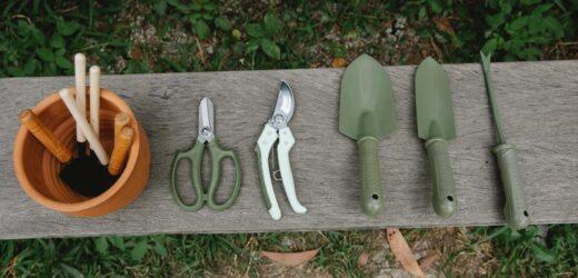 10 Most Popular Gardening Tools for Your Garden